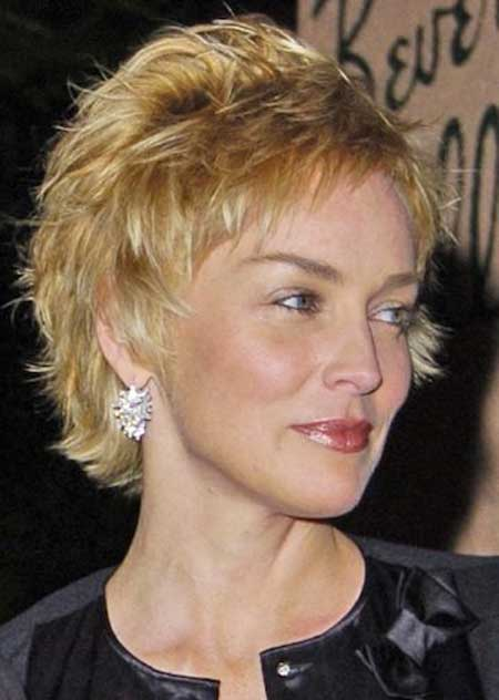 Pictures of Celebrity Short Hairstyles-Sharon Stone