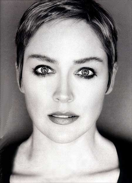 Trendy Celebrity Hairstyles-Sharon Stone