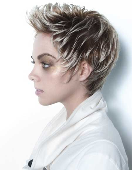 Spiked Frosted Short Hair