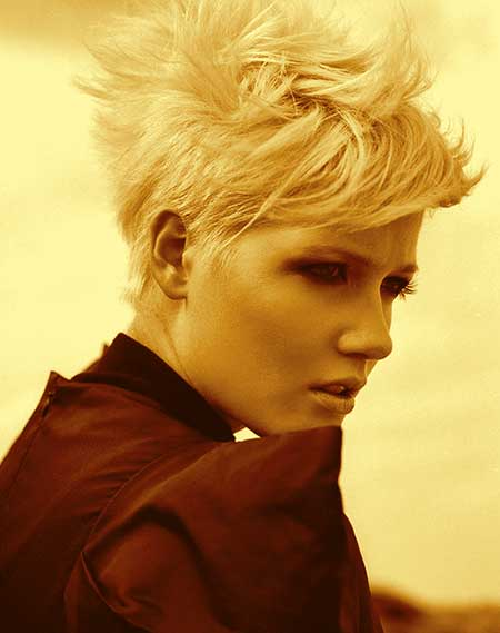 Short Hairstyle Trends 2014