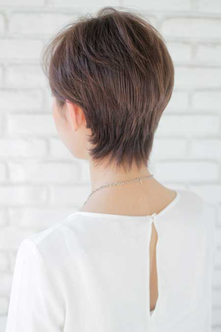 Back View Of Layered Short Hairstyle