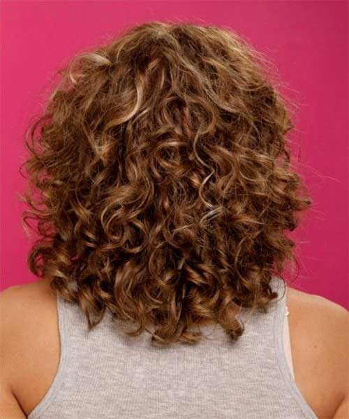 Natural Curly Short Hairstyle for Women Back View