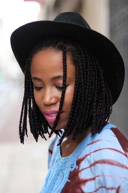 Fine Braid Bob Hairstyle Braids Hairstyle Inspiration Daily Dogsangcom