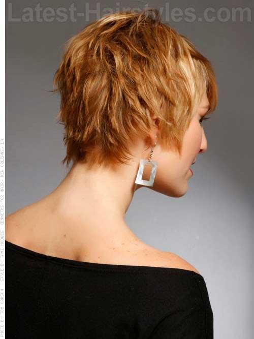 Shaggy Pixie Back Haircut View