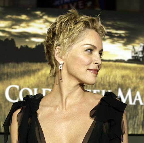 Celebrity Short Hairstyles-16