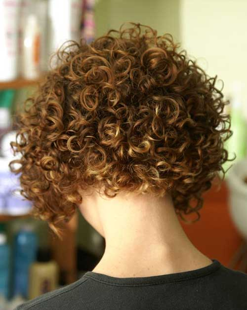 Curly Short Hairstyles Back