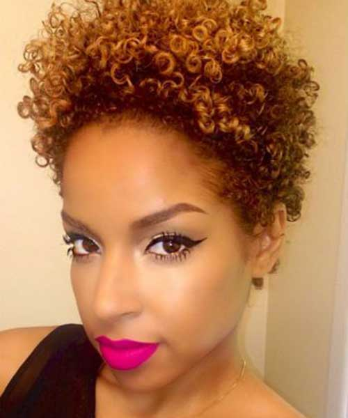Fantastic 25 Short Curly Afro Hairstyles Short Hairstyles 2016 2017 Hairstyle Inspiration Daily Dogsangcom
